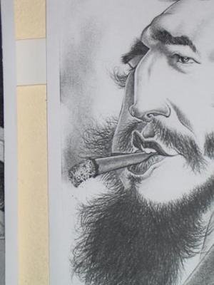 Caricaturas sobre Fidel Castro  en su cumpleaños 82
